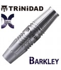 TRINIDAD X Model Barkley. 19grs SOFTIP DARTS
